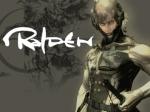 Raiden4900