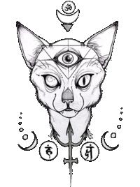 R.Gato