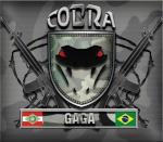 COBRA GAGA
