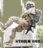 storm666