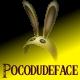 Pocodudeface