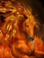 Hashira of firehorse