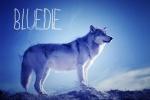 bluedie