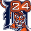 dtowntigers24