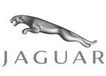 Jaguar44