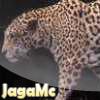 JagaMc