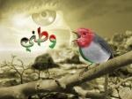 ابو محمد بهادر