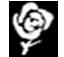 Social Ranck  Club de Aristócratas 2587067636