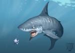 shark_2010