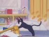 Sailor Moon Captures Usa_lu10