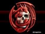dj.dragonluna