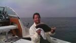kingfishking