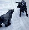Béta : Archives des séances de bourse au Forum 629-94