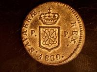 Navarrae
