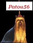 patou56