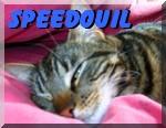 speedouil