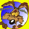 Coyote timbré