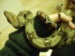 snakedeprime