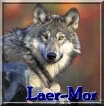 Laer-Mor