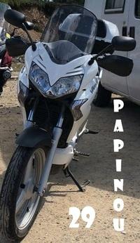 Papinou29