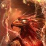 Phoenix8387