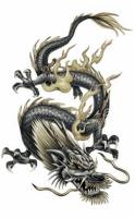 DragonMatrix