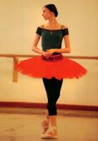 Pricesse-Ballet