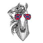 Cavaliere confederato