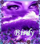 birdy/nightstar/colibri