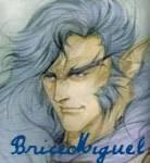 BriceMiguel