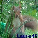 Laure49