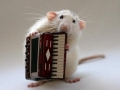 CMouse