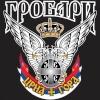 СрбинПодгорица