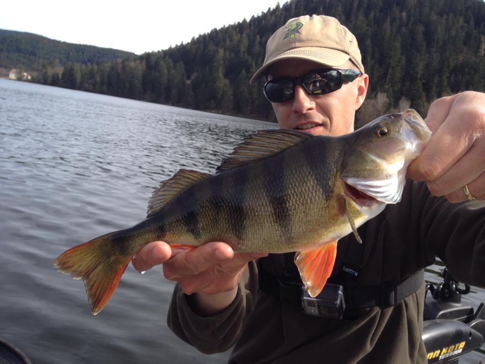 Nominations et photos de pêche 11017110
