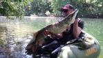 Pêche de la truite 2987-52