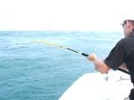 Pêche du brochet 5433-48