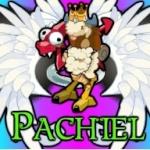 Pachiel