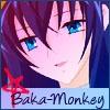 Baka-Monkey