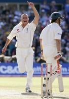 Cricketmad