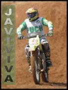 JaviViva