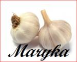 Maryka