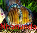 nhamunda