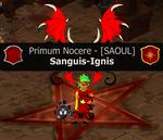 Sanguis-Ignis