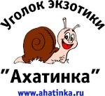 Ahatinka