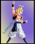 Loko®
