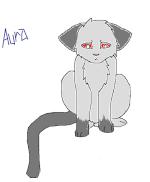 Aurapaw~Infernokit