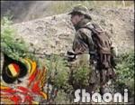 Shaoni