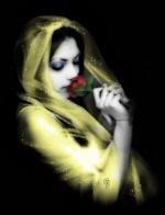 rosa diabolica
