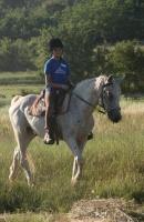 Ana voli konje