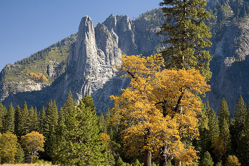 Yosemite history (1) Cathed10